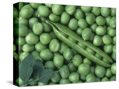 Peas, Frosty-Wally Eberhart-Stretched Canvas Print