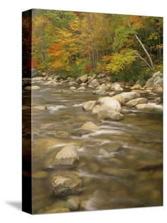 Autumn Colors Along the Swift River, White Mountains National Forest, New Hampshire, USA-Adam Jones-Stretched Canvas Print
