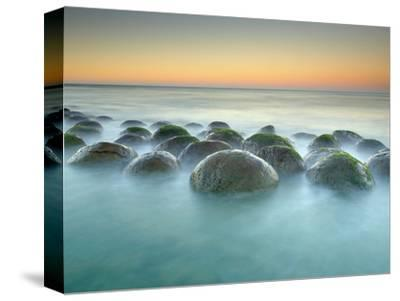 These Sandstone Concretions at Bowling Ball Beach Near Point Arena-Patrick Smith-Stretched Canvas Print