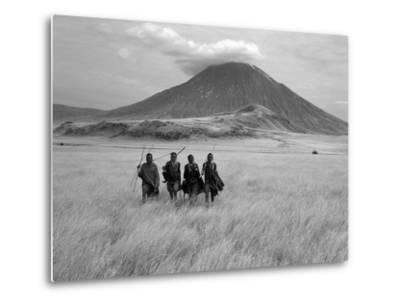 Maasai Warriors Stride across Golden Grass Plains at Foot of Ol Doinyo Lengai, 'Mountain of God'-Nigel Pavitt-Metal Print