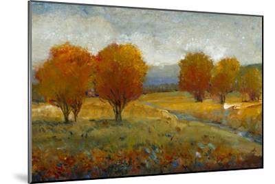 Vivid Brushstrokes II-Tim O'toole-Mounted Art Print
