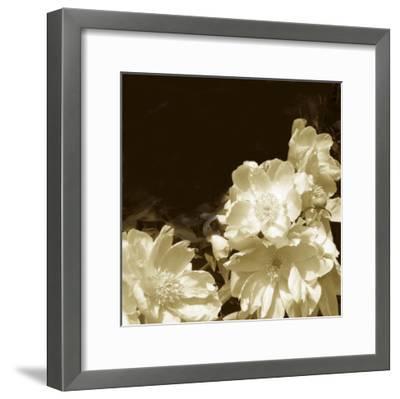 Non-Embellished Sepia Peonies II--Framed Art Print