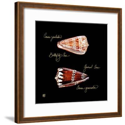 Striking Shells III-Ginny Joyner-Framed Art Print