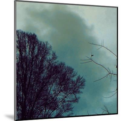 Nocturne II-Alicia Ludwig-Mounted Art Print