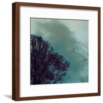 Nocturne II-Alicia Ludwig-Framed Art Print