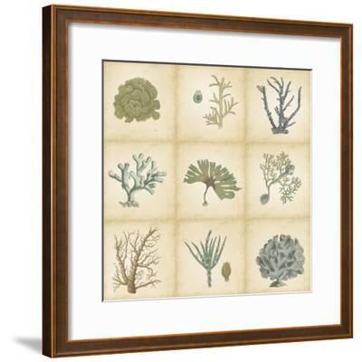 Coral Curio-Vision Studio-Framed Art Print