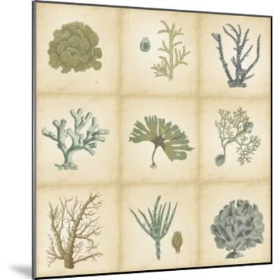 Coral Curio-Vision Studio-Mounted Art Print
