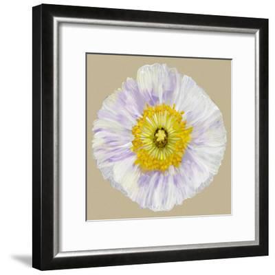 Poppy Blossom IV-Alicia Ludwig-Framed Art Print