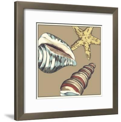 Shell Trio on Khaki I-Megan Meagher-Framed Art Print