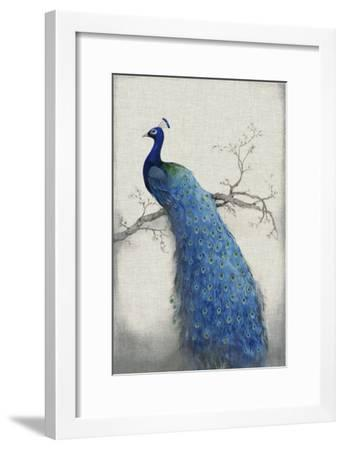 Peacock Blue II-Tim O'toole-Framed Art Print