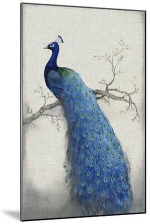 Peacock Blue II-Tim O'toole-Mounted Art Print