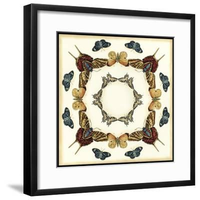 Butterfly Collector I-Chariklia Zarris-Framed Art Print