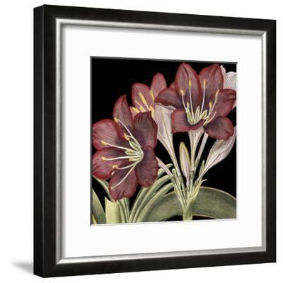 Dramatic Blossoms I-Vision Studio-Framed Art Print