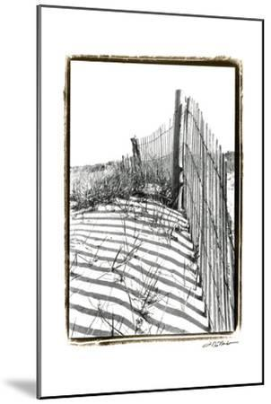 Beach Scape IV-Laura Denardo-Mounted Art Print