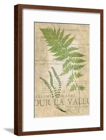 Fern Folio II-Vision Studio-Framed Art Print
