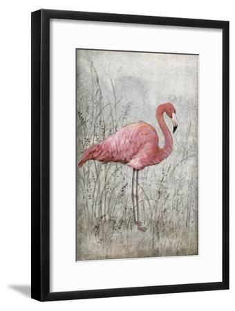 American Flamingo I-Tim O'toole-Framed Art Print
