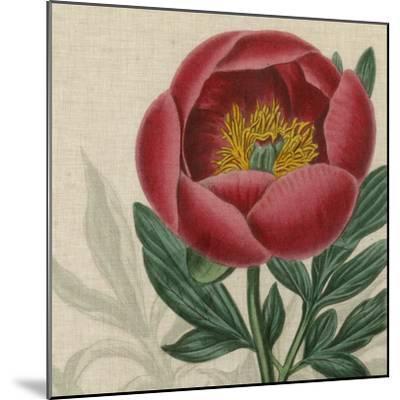 Floral Delight V-Vision Studio-Mounted Art Print
