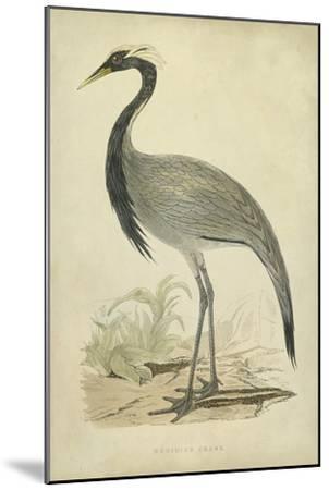 Morris Crane II--Mounted Art Print