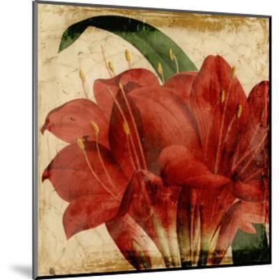 Vibrant Floral VIII-Vision Studio-Mounted Art Print
