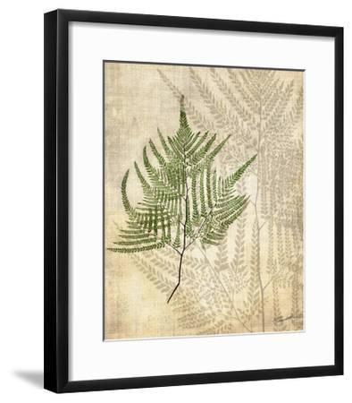 British Ferns V-John Butler-Framed Art Print