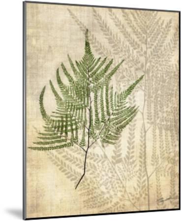 British Ferns V-John Butler-Mounted Art Print