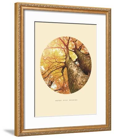 Inspirational Circle Design - Autumn Trees: Never Stop Growing-Subbotina Anna-Framed Giclee Print