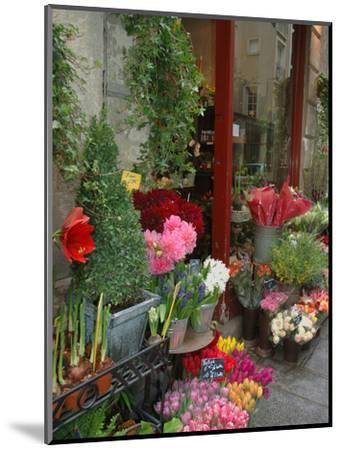 Florist in Ile St. Louis, Paris, France-Lisa S^ Engelbrecht-Mounted Photographic Print