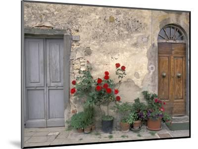 Tuscan Doorway in Castellina in Chianti, Italy-Walter Bibikow-Mounted Photographic Print