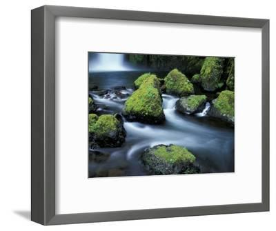 Water Below Wahclella Falls, Columbia River Gorge National Scenic Area, Oregon, USA-Adam Jones-Framed Photographic Print