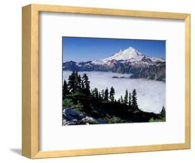 View of Mount Baker from Artist's Point, Snoqualmie National Forest, Washington, USA-William Sutton-Framed Photographic Print