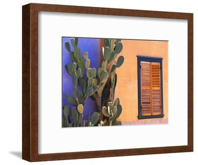 Southwestern Cactus and Window, Tucson, Arizona, USA-Tom Haseltine-Framed Photographic Print