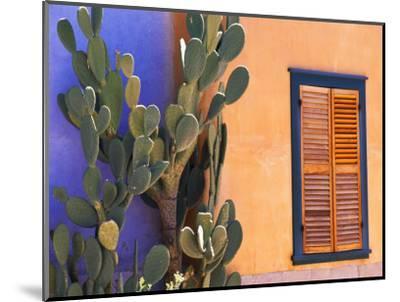 Southwestern Cactus and Window, Tucson, Arizona, USA-Tom Haseltine-Mounted Photographic Print