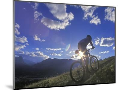 Mountain Biker at Sunset, Canmore, Alberta, Canada-Chuck Haney-Mounted Photographic Print
