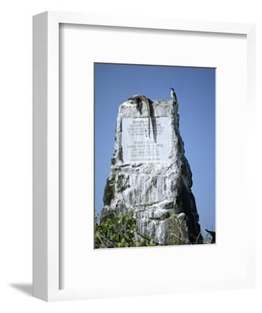 Marine Iguana and Galapagos Mockingbird Atop a Monument, Galapagos Islands, Ecuador-Charles Sleicher-Framed Photographic Print