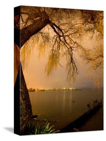 City Lights across Lake Rotorua, Rotorua, Bay of Plenty, North Island, New Zealand-David Wall-Stretched Canvas Print