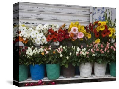 Flower Market, Port Louis, Mauritius-Walter Bibikow-Stretched Canvas Print