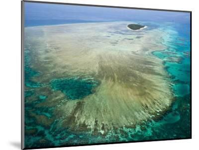 Aerial View of Green Island, The Great Barrier Reef, Cairns Area, North Coast, Queensland-Walter Bibikow-Mounted Photographic Print