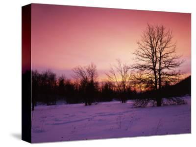 Sunrise at Thorton Gap, Shenandoah National Park, Virginia, USA-Charles Gurche-Stretched Canvas Print