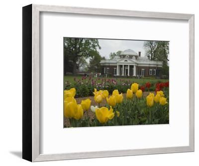 Tulips in Garden of Monticello, Virginia, USA-John & Lisa Merrill-Framed Photographic Print