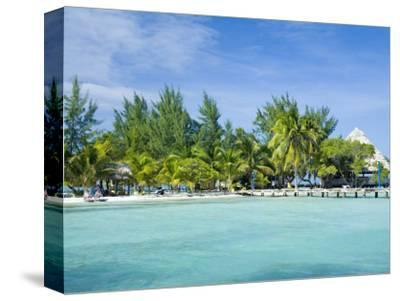 South Water Cayes Marine Reserve, Hopkins, Stann Creek District, Belize-John & Lisa Merrill-Stretched Canvas Print