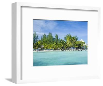 South Water Cayes Marine Reserve, Hopkins, Stann Creek District, Belize-John & Lisa Merrill-Framed Photographic Print