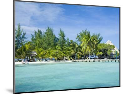 South Water Cayes Marine Reserve, Hopkins, Stann Creek District, Belize-John & Lisa Merrill-Mounted Photographic Print