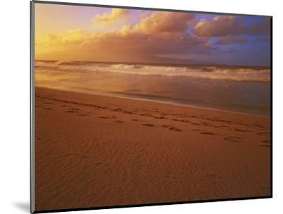 Sunset at DT Fleming State Beach, Maui, Hawaii, USA-Charles Gurche-Mounted Photographic Print