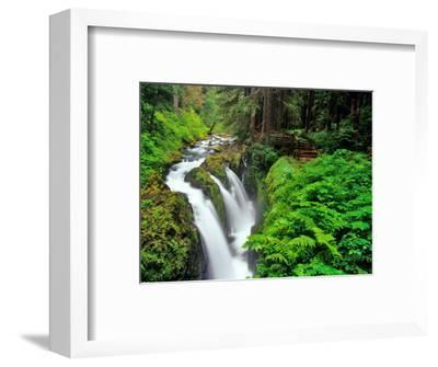 Sol Duc Falls in Olympic National Park, Washington, USA-Chuck Haney-Framed Photographic Print