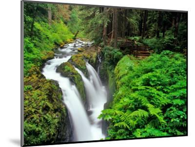 Sol Duc Falls in Olympic National Park, Washington, USA-Chuck Haney-Mounted Photographic Print