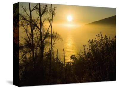 Sweet Fennel, Foeniculum Vulgare, and Sunset over Big Sur Coastline, California, Usa-Paul Colangelo-Stretched Canvas Print