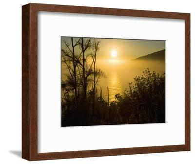 Sweet Fennel, Foeniculum Vulgare, and Sunset over Big Sur Coastline, California, Usa-Paul Colangelo-Framed Photographic Print