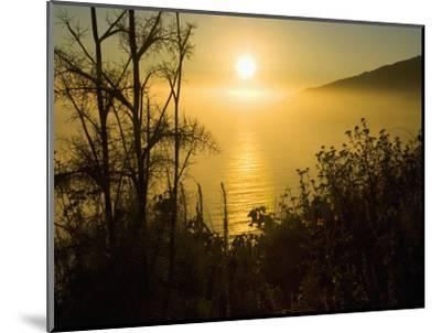 Sweet Fennel, Foeniculum Vulgare, and Sunset over Big Sur Coastline, California, Usa-Paul Colangelo-Mounted Photographic Print