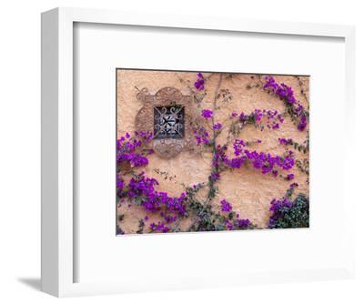 Ornamental Window, San Miguel De Allende, Mexico-Alice Garland-Framed Photographic Print