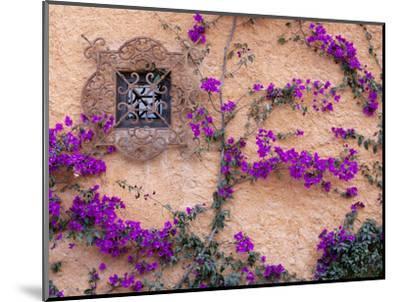 Ornamental Window, San Miguel De Allende, Mexico-Alice Garland-Mounted Photographic Print